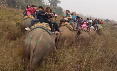 3 nights 4 days chitwan jungle safari