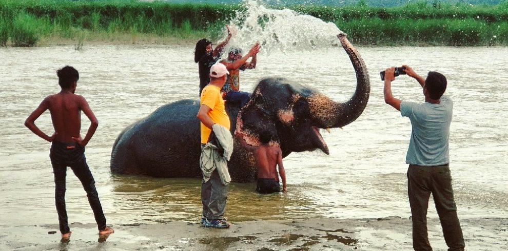 1 night 2 days chitwan safari